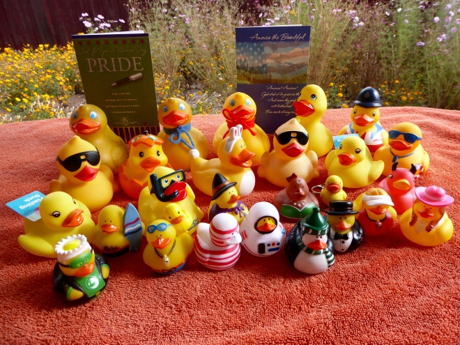 Happy Veteran's Day from all the Colorado Traveling Ducks