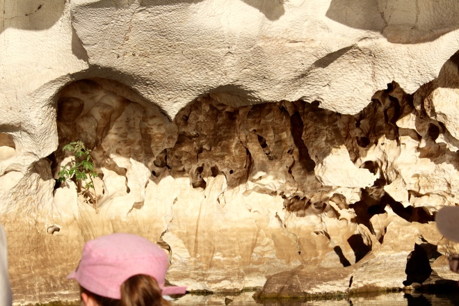 Into cave with fossils on wall