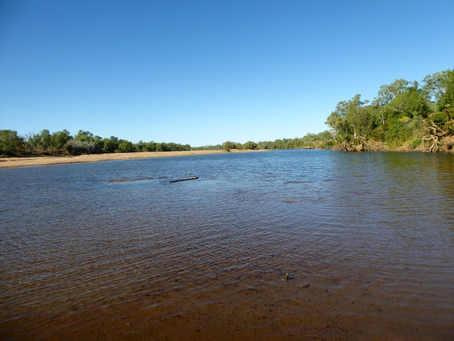 Fitzroy River is now wide and shallow