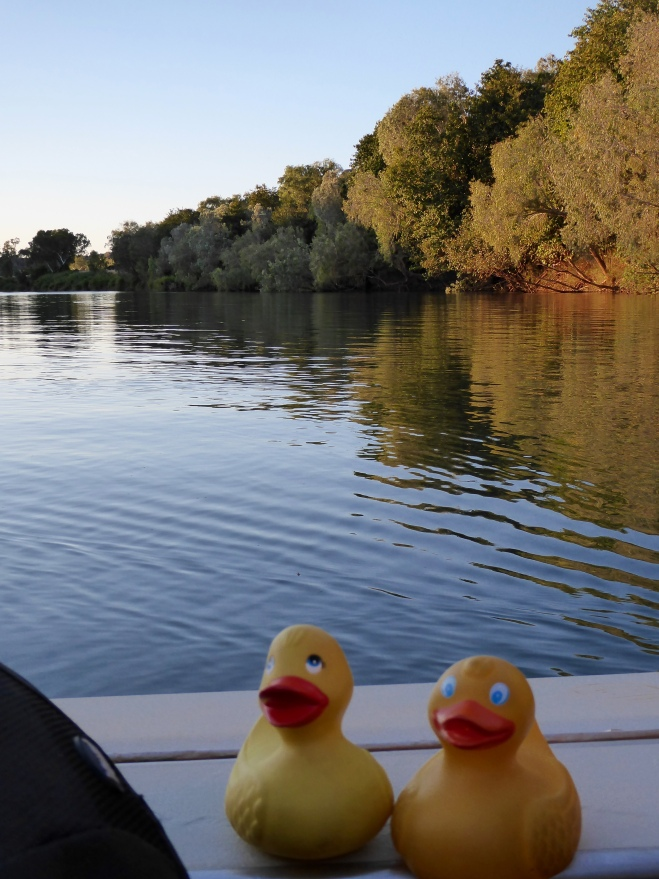 Cruising down the Fitzroy River