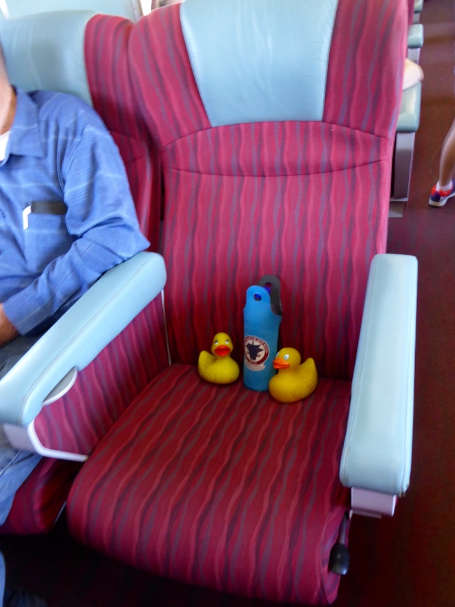 Comfortable in our seat with a water bottle