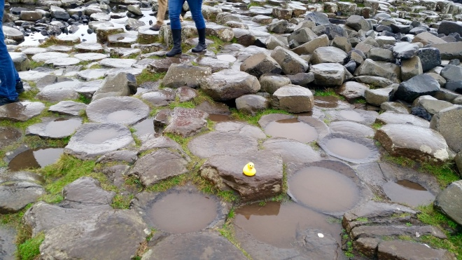 Basalt columns make steps at Giant's Causeway
