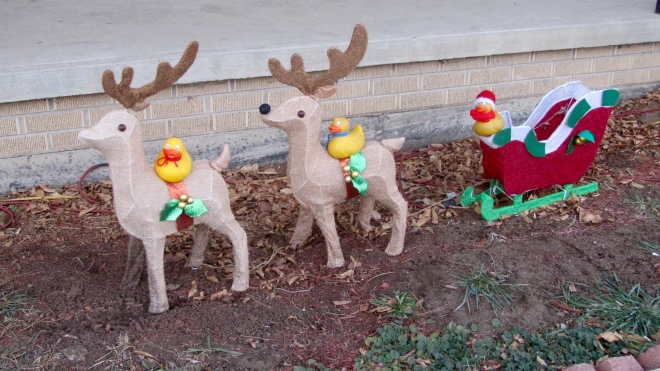 Colorado Traveling Ducks are ready to help Santa on Christmas Eve