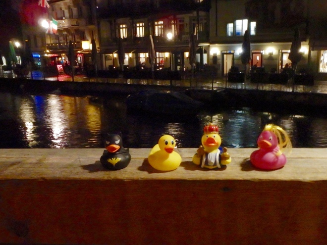 Ms. Ducky and friends. Evening on canal in Amsterdam. Be careful there!