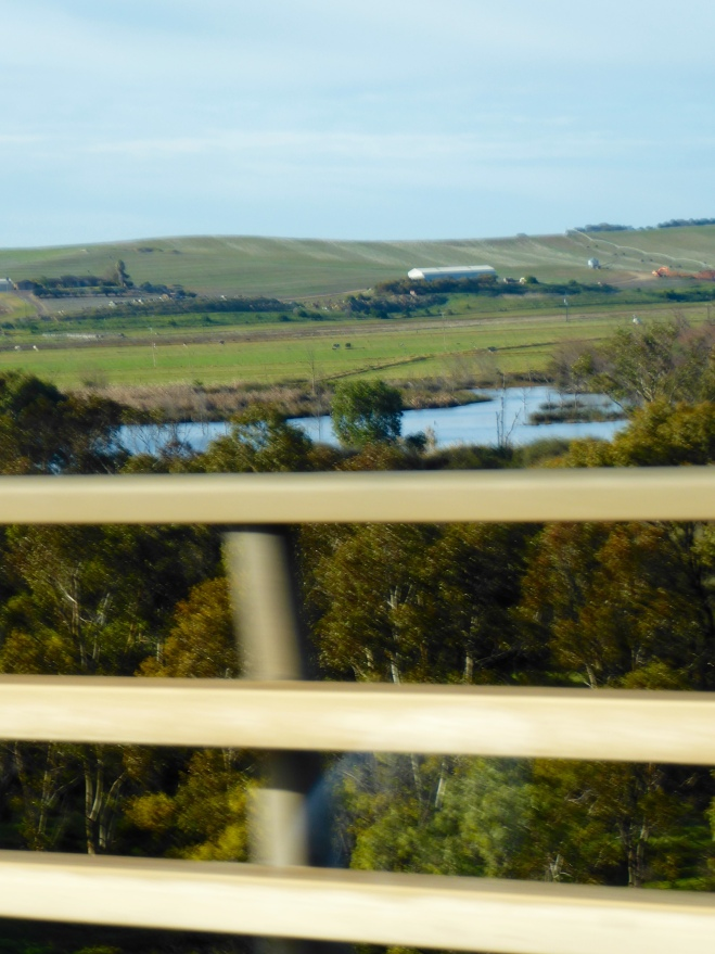 Hilly pasture land east of Adelaide