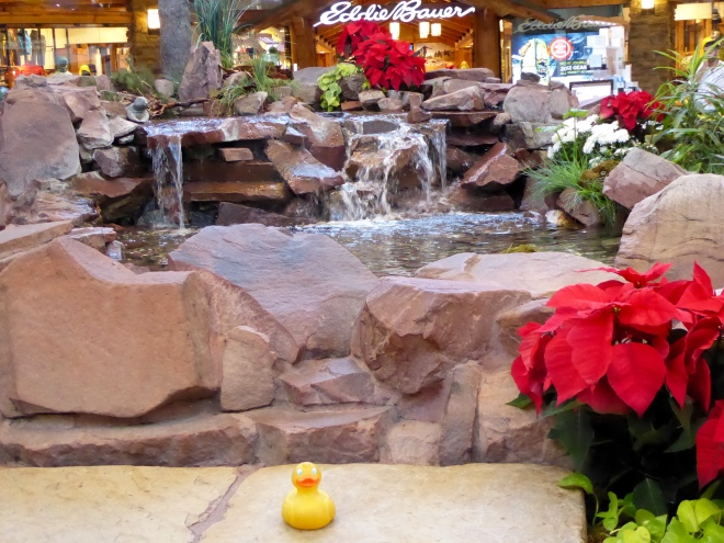 Water rapids and fountain ready for Christmas