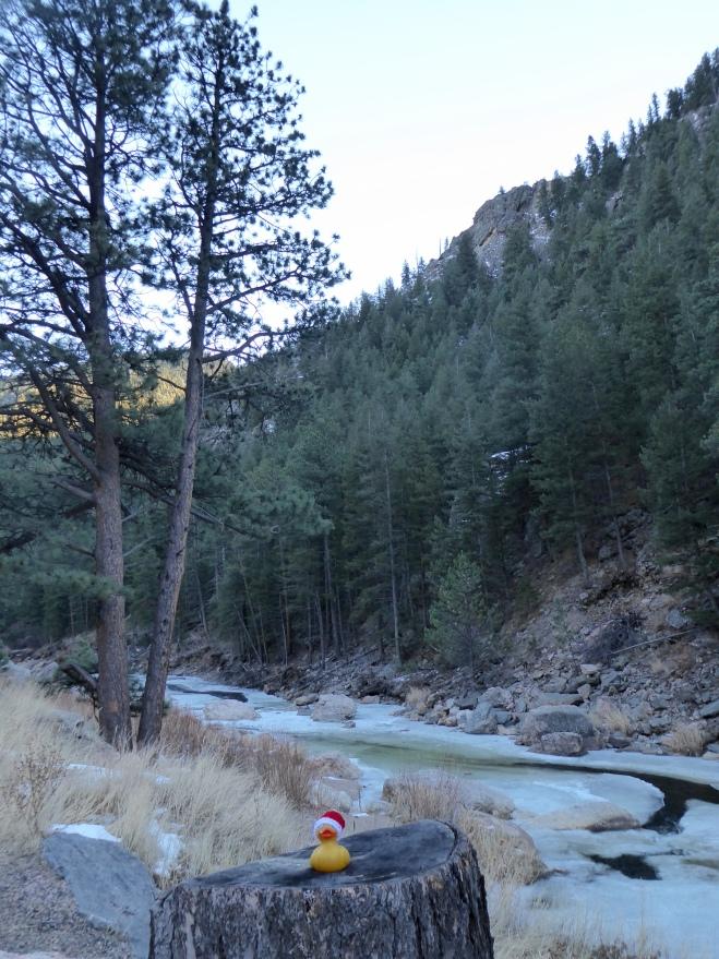 Big Thompson River through the canyon