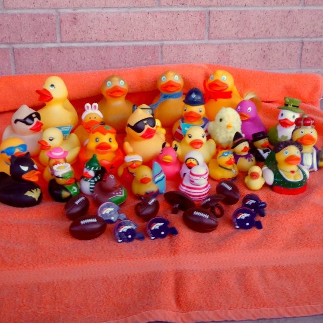 The Colorado Traveling Ducks and Friends Love the Denver Broncos