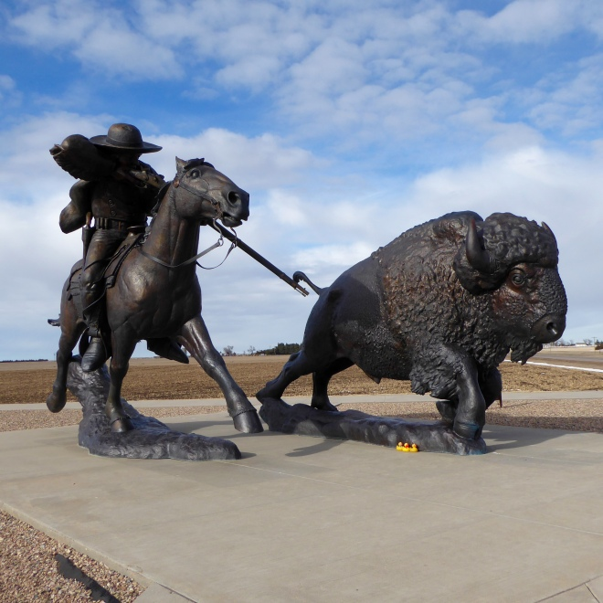 Buffalo Bill and a Buffalo
