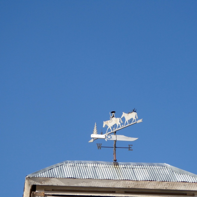 Love the weather vane