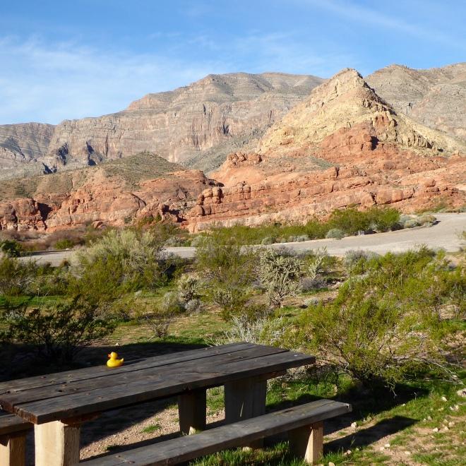 Picnic area at Virgin River Canyon Recreation Area