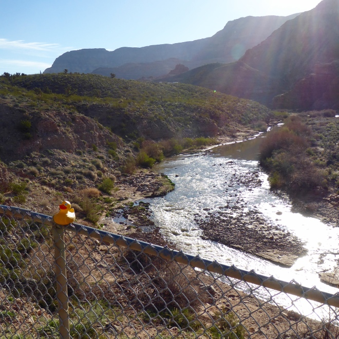 The Virgin River. Rapids and calm places