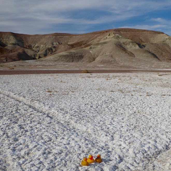 Minerals in Tecopa, CA