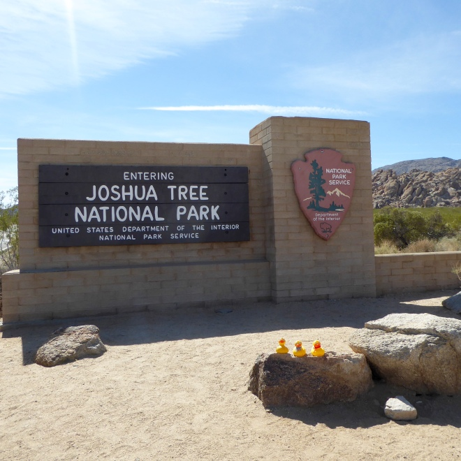 We are entering Joshua Tree National Park