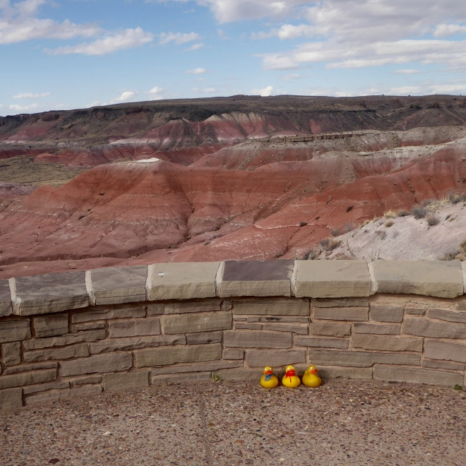 Looking at painted desert in the canyon