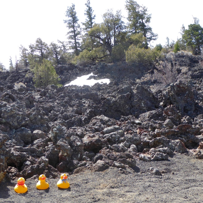 Scattered lava rocks
