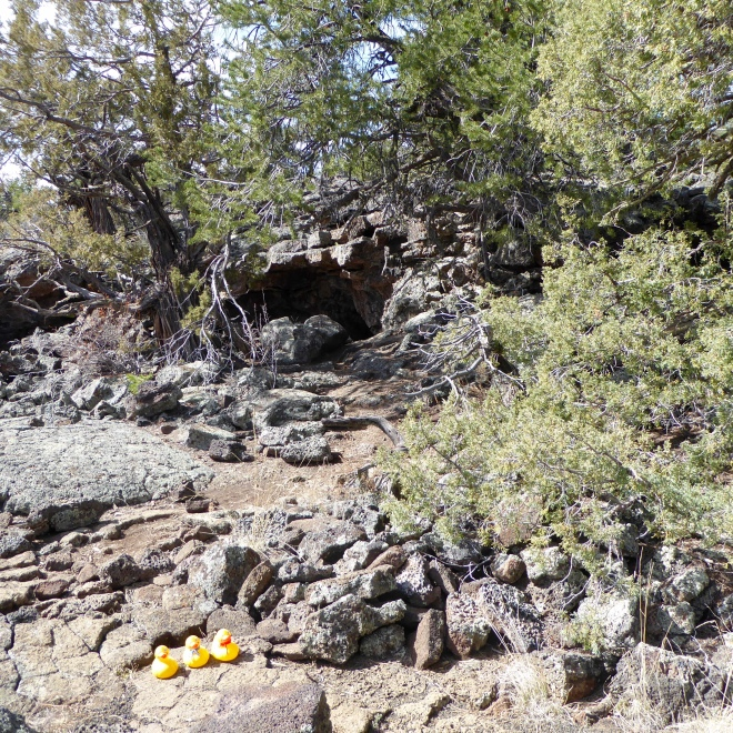 Native American Indians used the lava tube like a cave.