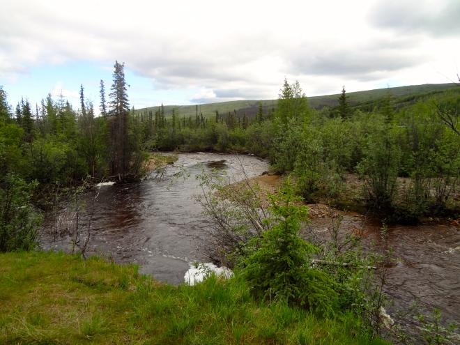 From Alaska's Taylor Highway