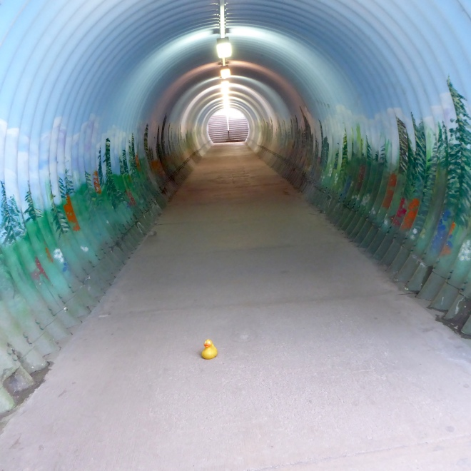 Inside the pedestrian tunnel