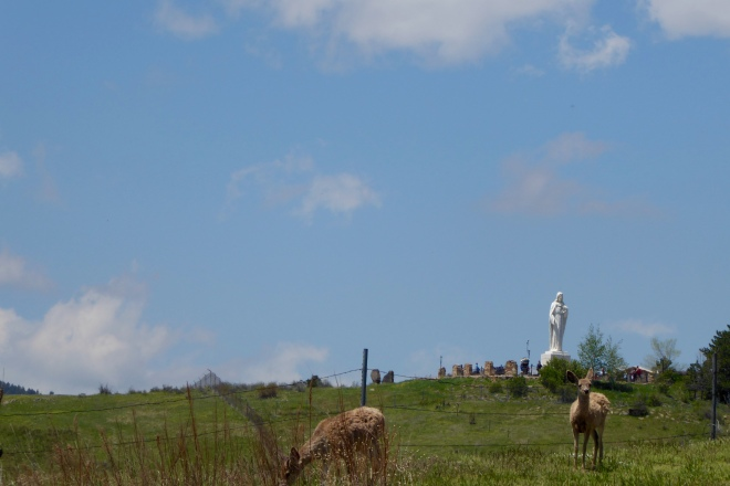 Deer on hill with Mother Cabrini Statue in background