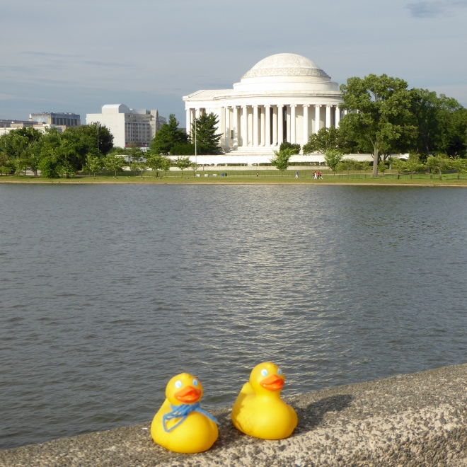 Jefferson Monument across Tidal Basin, Washington DC