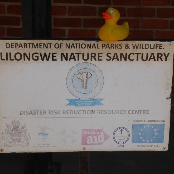 Let's explore he Lilongwe Nature Sanctuary