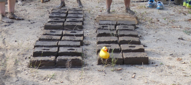 Bricks will dry in tropical sun