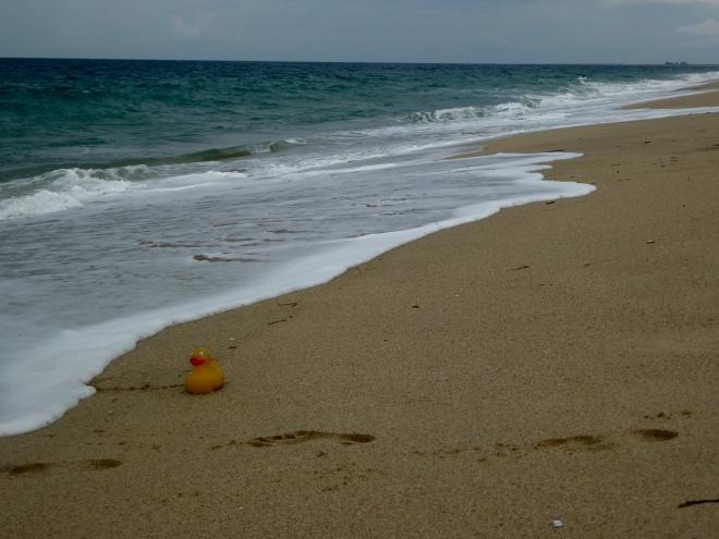 I got wet in the Indian Ocean