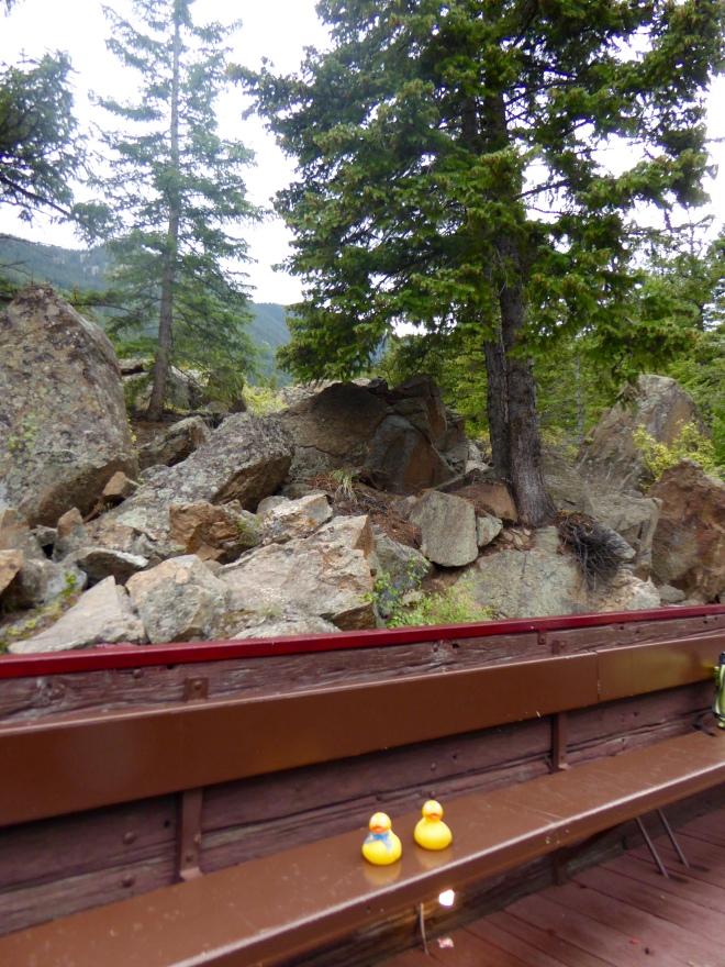 Love riding in Colorado's Rocky Mountains
