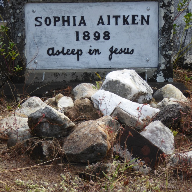Sophia Aitken at rest