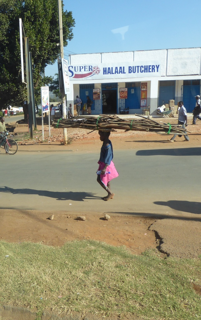 Young girl carrying heavy load of wood in Zomba