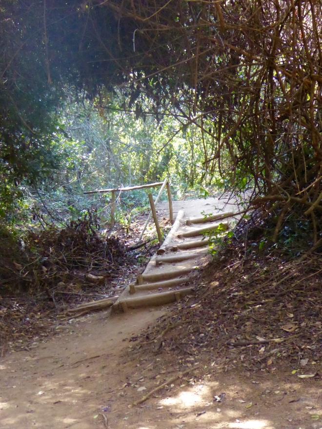 Scenic stairs