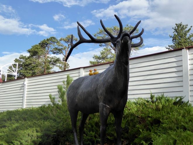 Colorado Traveling Ducks on bronze elk