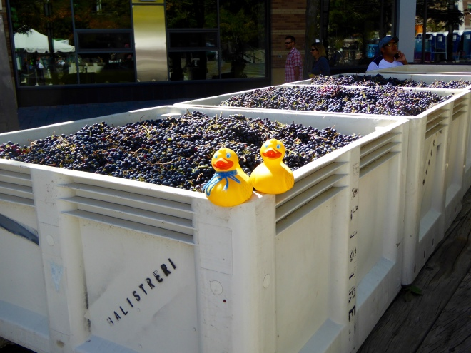 Stomp these grapes!