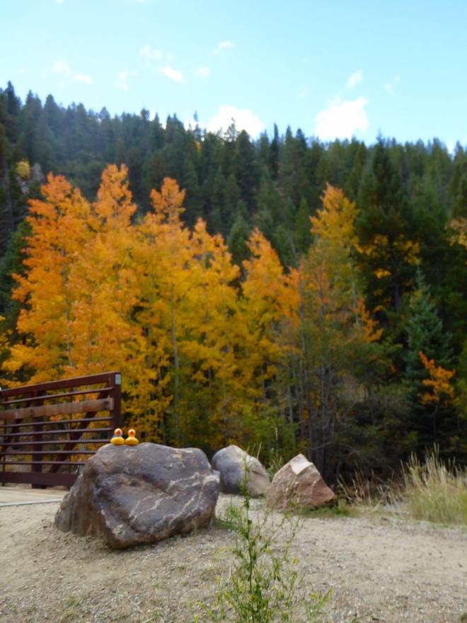 Beautiful colors at Geneva Creek