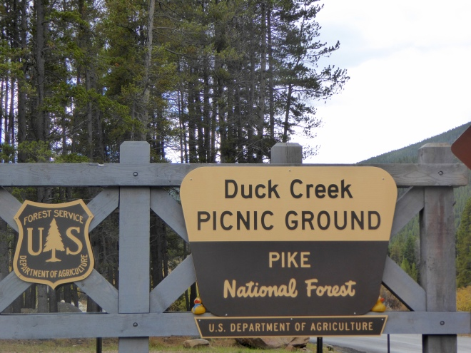 Duck Creek Picnic Ground. For us?