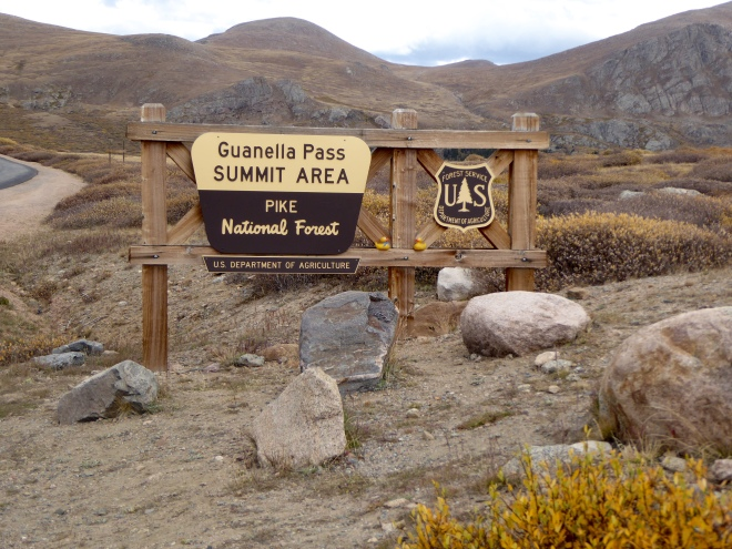Guanella Pass area, above timberline.