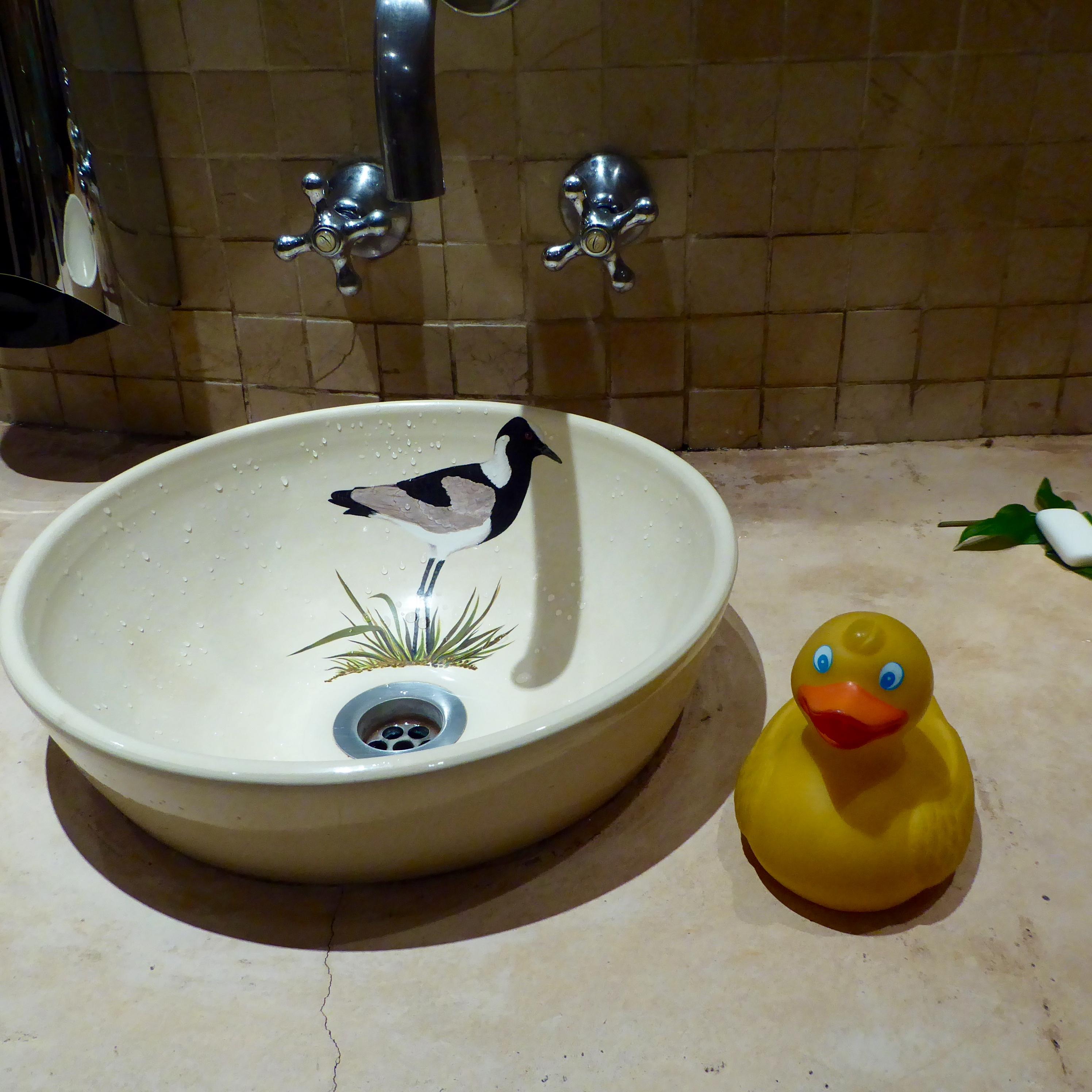 Sedudu Island – Colorado Traveling Ducks