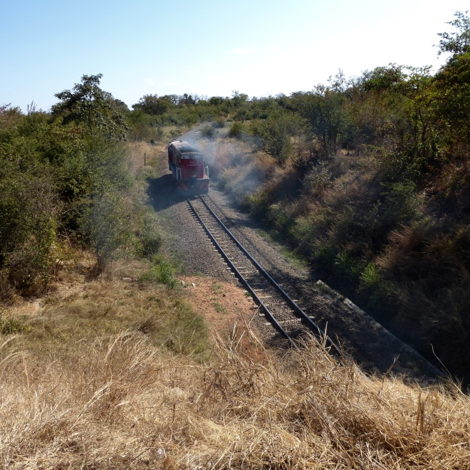 Train through Victoria Falls, Zimbabwe. Between town and waterfalls