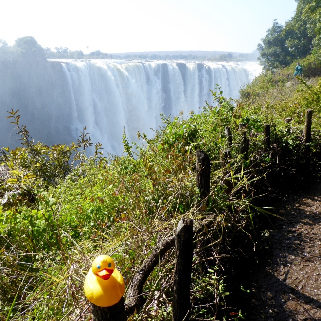 Victoria Falls has such force of falling water