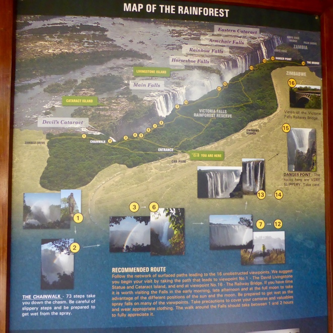 Information about rain forest and water falls