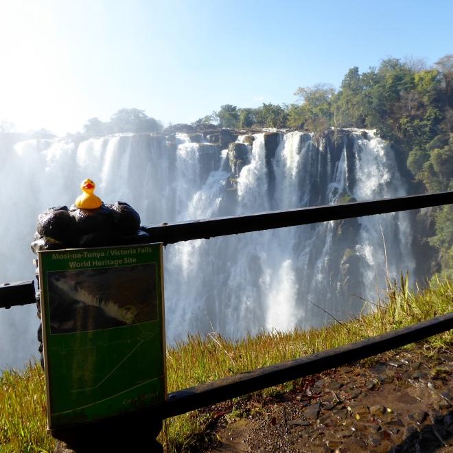 Victoria Falls from Victoria Falls Bridge