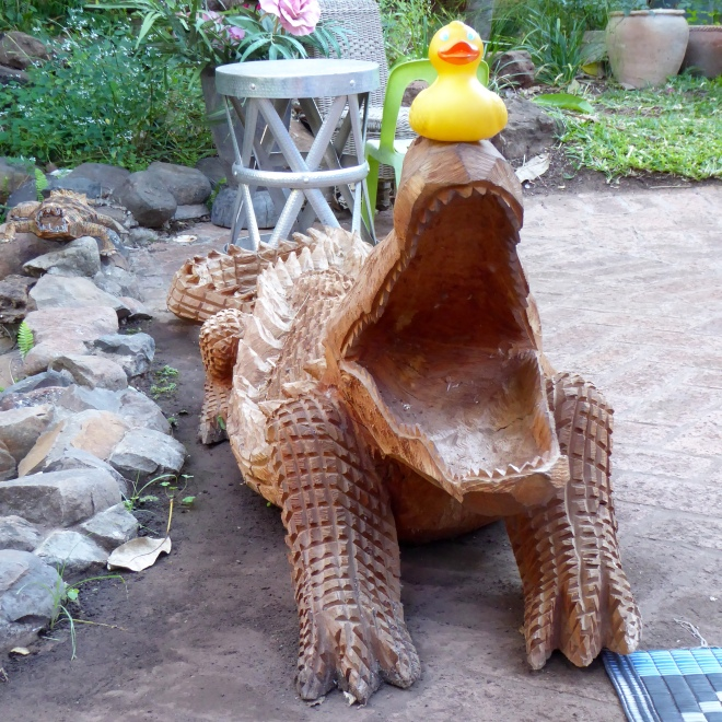 I like this crocodile