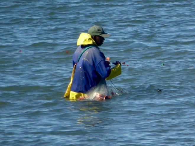 Bringing in fishing nets