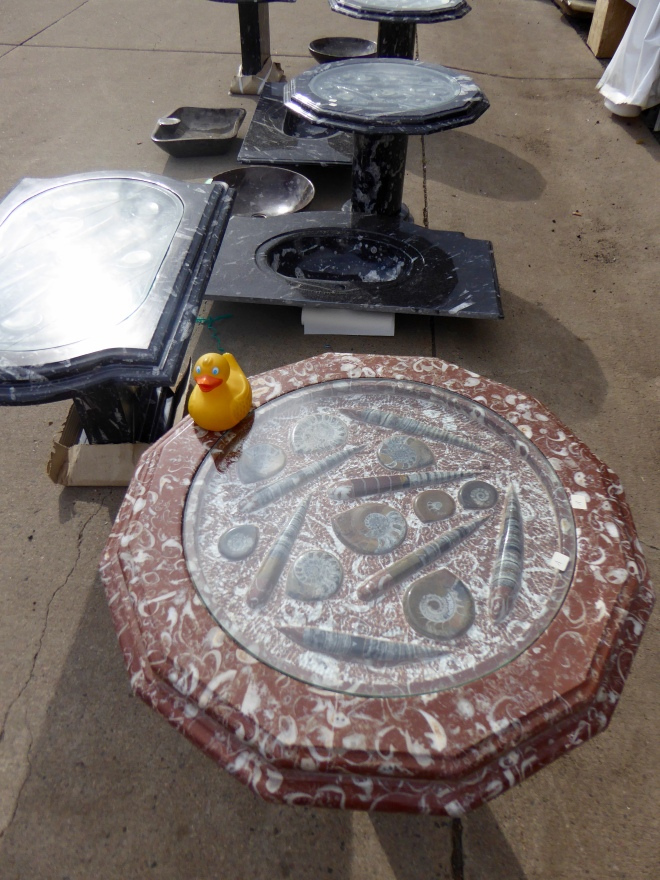 Table with fossils