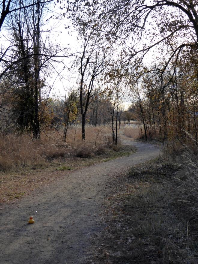 Unpaved through wilderness areas