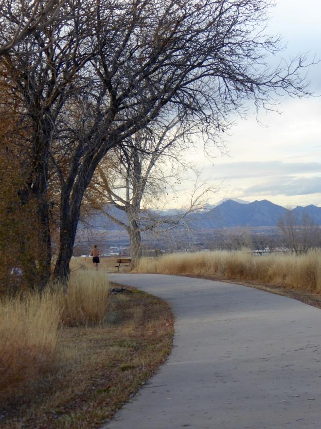 Running and jogging around the lake