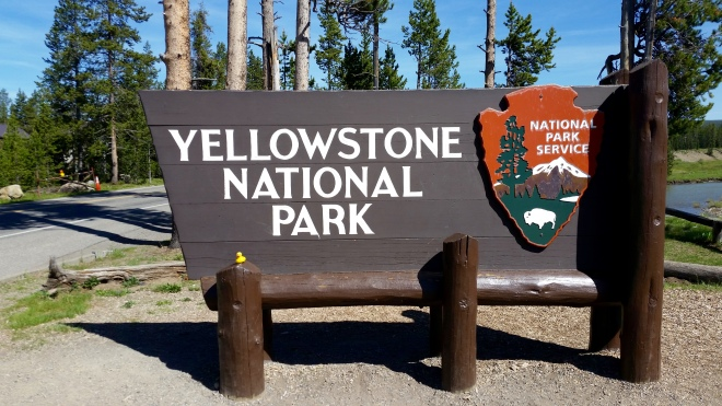 Yellowstone National Park with Ms. Ducky