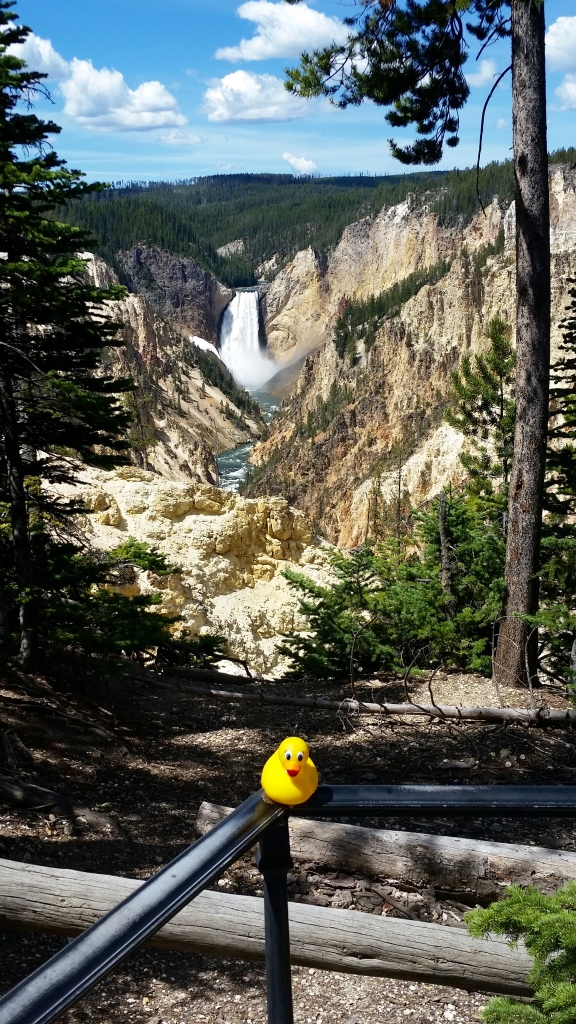 Canyon and waterfalls in Yellowstone National Park