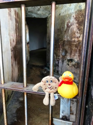 Bucket and Chip--don't go inside that prison cell.